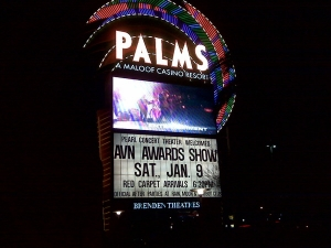 avn-awards-sign-2